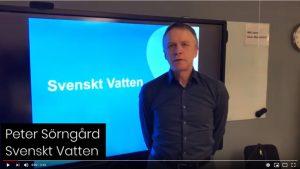 Peter Sörngård, Svenskt Vatten