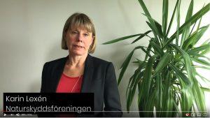 Karin Lexén, generalsekreterare Naturskyddsföreningen