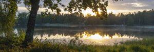 Bolmen i solnedgång