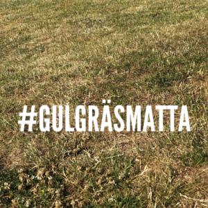 Gul gräsmatta